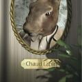 Chaud Lapin_image