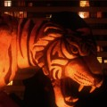 Tyger / by Guilherme Marcondes / 2005